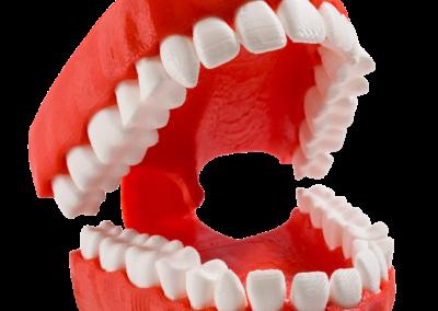 Copy-of-Teeth